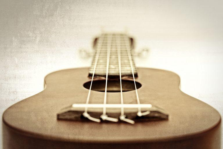 different ukulele strings